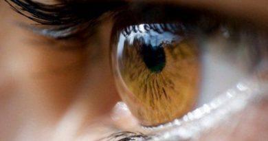 Los sentidos: el oido y la vista