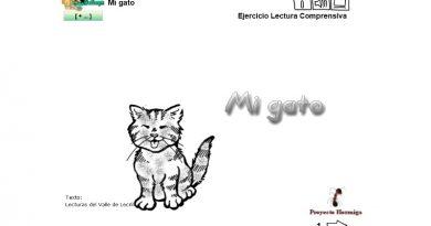 Mi gato